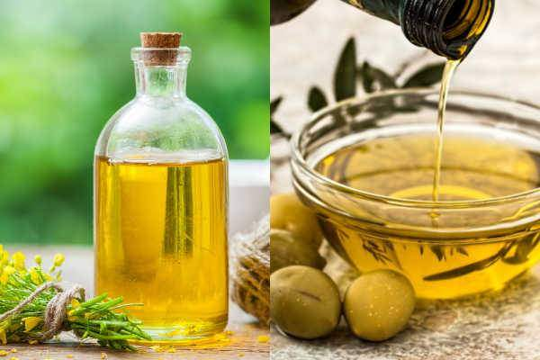 What Is Canola Oil And Olive Oil